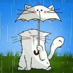 Si llueve en tu vida... ponele