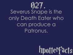 Harry Potter Facts #027