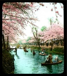 Japanese  Landscape of the past