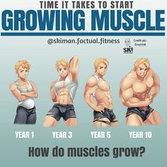 Grow your muscles with the best Bulking Stack that comes with legal steroids for maximum muscle growth without side effects. Best Chest Workout, Chest Workouts, Fun Workouts, Muscle Fitness, Gain Muscle, Build Muscle, Muscle Mass, Rugby Workout, How To Grow Muscle