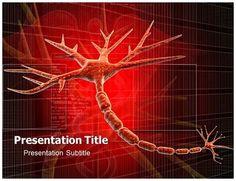 Neurology powerpoint templates pinterest template toneelgroepblik Choice Image