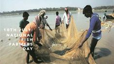 Farmers Day, Blog Page, Government Jobs, Affair, Channel, This Or That Questions, Link