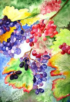 Original Watercolor Painting--Grapes from the Vineyard
