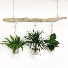 Recovering, recycling, repairing, a new way to consume décoration murale Diy Room Decor For Teens, Diy Home Decor, Recycling, Deco Nature, Économie Collaborative, Home Ceiling, Home Decor Quotes, Home Pictures, Home Repair