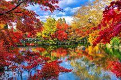 japanese garden pic for desktop hd, 2048x1365 (1421 kB)