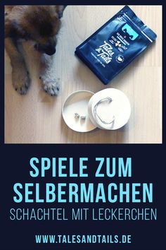 Do-it-yourself dog games-Hundespiele zum selbermachen Funny and simple DIY games for dogs to make yourself. All you need for this game is a small box with a lid and treats. Your dog will love it. Dog Games, Funny Games, Diy Pet, Homemade Stuffed Animals, Dog Fun, Puppy Face, Pet Accessories, Dog Supplies, Large Dogs