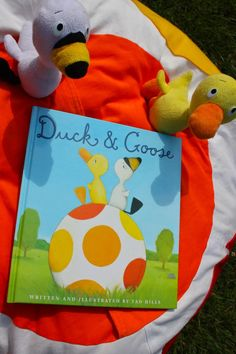 24 Best Duck Amp Goose Images Pumpkin Birthday Parties