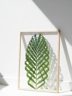 Faça você mesmo, quadro de folha de Palmeira-areca. Verde na decoração é vida!