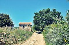 La colla di Diano Gorleri #Liguria