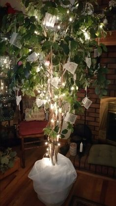 Money/Gift Tree for bridal shower or maybe even a Baby Shower. A ficus tree added lights and lace. Then added little mesh bags to put gift cards or money or whatever in just case it isn't in and envelope or they don't want to pin it on the tree.