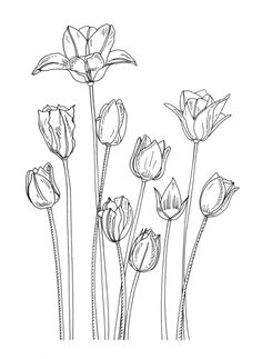 tulip rubberstamp - Google Search