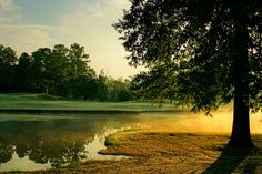 RTJ Golf Trail at Oxmoor Valley