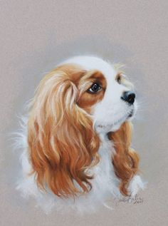 Amazing portrait artist Sally Gates did one of a Cavalier King Charles Spaniel! Click through to see her other fabulous portraits of people and dogs.