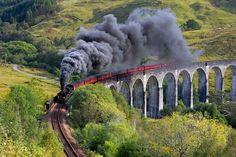 Le Poudlard Express d'Harry PotterLe Jacobite est l'un des plus vieux trains à vapeur du monde. Il traverse les collines verdoyantes et les lacs grandioses d'Ecosse entre les villes de Fort William et Mallaig. Des paysages incroyables notamment choisis comme décors pour le passage du Poudlard Express, dans les films Harry Potter.