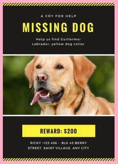 missing pet flyer template