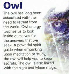 The owl - a large part of what my owl tattoo means to me. ACB