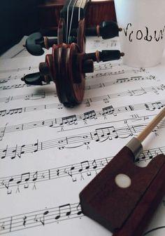 violino @Prof Gabii melhor mestre