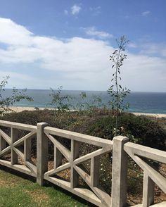 Morning coffee walk view #nature #beauty #mindfulness  #plantlife #ocean #appreciatethelittlethings #coffeeWalk #j66labs