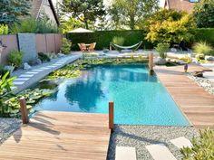 Une piscine naturelle : le rendez-vous des grenouilles
