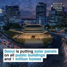 November World Economic Forum posted on LinkedIn World Economic Forum, Have Time, Solar Panels, South Korea, Climate Change, Sustainability, Environment, Public, America
