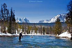 Steelhead fishing Salmon River