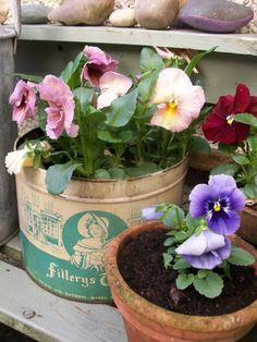 """Hello my friends, are you in the mood for spring planting? Let's do a """"Cottage Garden Cottage"""", with an English flavour, pretty spring hues, and maybe a few garden visitors <3"""
