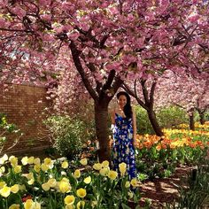 April Showers Bring May Flowers! Reason #882838 Why I❤️ny So Much! So #pretty! #ykmyway By Yumi Kim