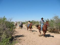 Trail ride at Stagecoach Trails Guest Ranch http://www.ranchseeker.com/index.cfm/pg/listing_details/id/11917/frompopup/0