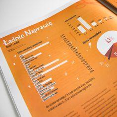 """Kim są nasi czytelnicy i użytkownicy seriwsu """"Ładnie Naprawię""""? W 1. numerze prezentujemy szczegółowy raport, przedstawiający grupy osób najbardziej zaangażowane w nasz projekt!"""