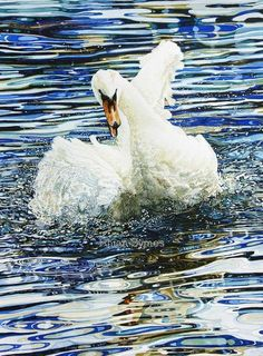 Watch this for splashing - Rhian Symes Watercolor Animals, Beautiful Birds, Owls, Artwork, Paintings, Artists, Watch, Amp, Work Of Art