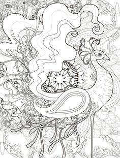 Crazy Peacock Coloring Page For Adults