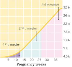 Beyond Fit Mom Healthy Pregnancy Weight Gain Baby Chart