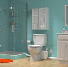 basement bathroom plumbing pump. Saniflo SaniPLUS Toilet System Basement Bathroom addition  A source of inspiration for installing