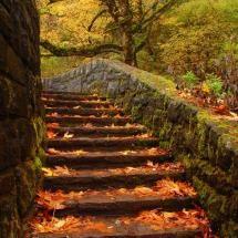 Emerald Gorge, OR