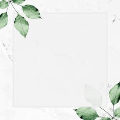 Square silver frame with foliage pattern on marble textured background Plant Wallpaper, Flower Background Wallpaper, Flower Backgrounds, Background Patterns, Textured Background, Wallpaper Backgrounds, Instagram Design, Instagram Frame, Feeds Instagram