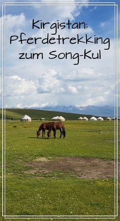 Lebe das Nomadenleben in Kirgistan!