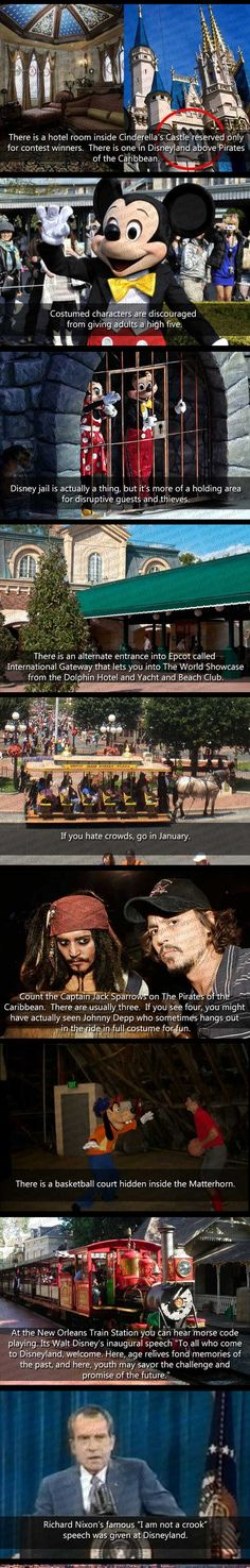 Things You Don't Know About Disney World - The Meta Picture <<< Why in the world would the characters be discouraged to give adults high fives?