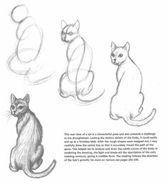 how-to-draw-a-cat-one-way-image-from-the-book-catart-001.jpg (1166×1287)