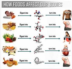See how what you eat affects your body