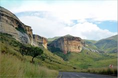 Golden Gate Highlands National Park is located in Free State, South Africa, near the Lesotho border. It covers an area of 340 km². The park's most notable features are its golden, ochre, and orange-hued deeply eroded sandstone cliffs and outcrops, especially the Brandwag rock. Another feature of the area is the numerous caves and shelters displaying San rock paintings. Wildlife featured at the park includes mongooses, eland, zebras, and over 100 bird species.