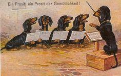 Dachshund Choir Matted Dog Art Print German New | eBay