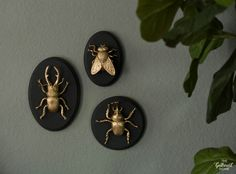 These gilded insect faux taxidermy plaques (made with craft store supplies) are such a quick, easy and glamorous project - art for your walls! Gold Diy, Anthropologie Home, Bug Art, Faux Taxidermy, Diy Recycle, Recycled Crafts, Recycled Home Decor, Diy Wall, Wall Art