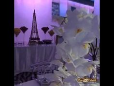 Catering a beautiful baby shower! - https://www.youtube.com/watch?v=4NWBkSvzz6o&feature=youtu.be #boncafetit #love #cute #photooftheday #beautiful #party #picoftheday #amazing #dessert #unique #catering #partyideas #crepe #crepestation #desserttable #sweetcrepes #nutella #babyshower