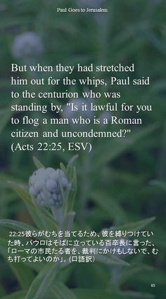 "But when they had stretched him out for the whips, Paul said to the centurion who wasstanding by, ""Is it lawful for you to flog a man who is a Roman citizen and uncondemned?""(Acts 22:25, ESV) 22:25彼らがむちを当てるため、彼を縛りつけていた時、パウロはそばに立っている百卒長に言った、「ローマの市民たる者を、裁判にかけもしないで、むち打ってよいのか」。 (口語訳)"