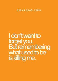 I don't want to forget you.  But remembering what used to be is killing me.