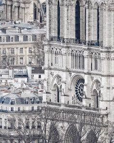@freepy photography  |  Paris, France, 2016
