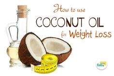 Losing weight is no longer just the latest fitness fad or a tactic to improve one's looks. Maintaining a healthy weight can mean the difference between a carefree and a strained life. Let coconut oil come to your aid in this ceaseless quest. Health consciousness is encouraging people to go in different directions to either...