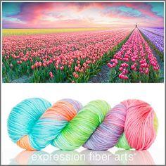 Tulip Farm - squishy and delicious DEWY DK yarn by expression fiber arts - a soft rainbow of shades