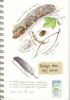 Things from my yard ~ artist Elizabeth Smith.  I like the small icon at the bottom right noting the date & weather of that day.    #art #journal