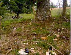 Pedigo Family Cemetery, Randolph, Metcalfe County, Kentucky
